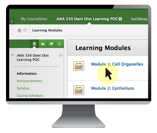 Learning Management Systems